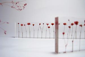 studio note flowers